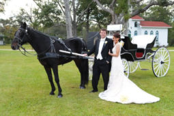 Wedding photo of married couple next to horse carriage